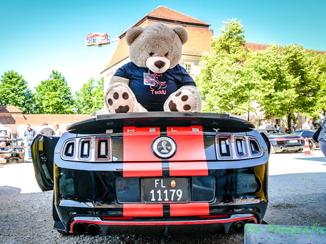 Ford Mustang Shelby GT500 Convertible Teddybear