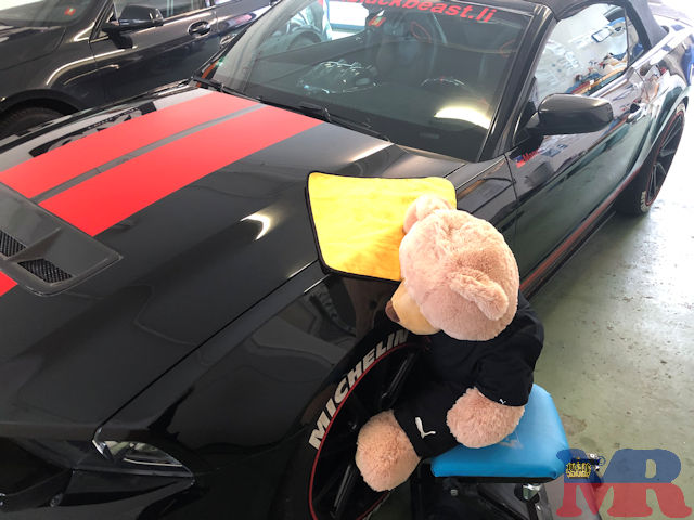 Ford Mustang Selby GT500 Convertible Teddy
